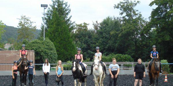 Fünf Tage Spiel und Spaß mit Pferden
